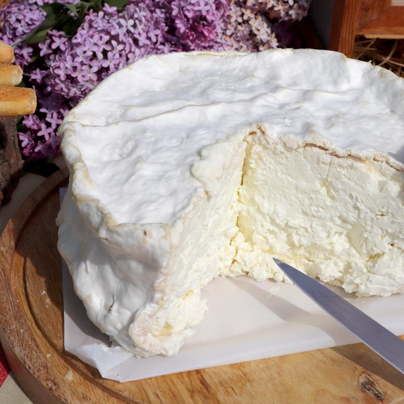 La-galattica-cascina-isidoraFormaggetta-fresca-di-capra-Ovada-Alessandria-piemonte-02