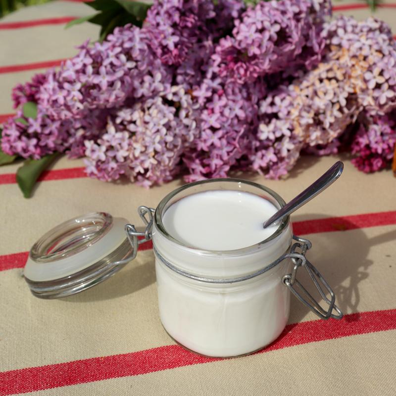Yogurt di capra naturale